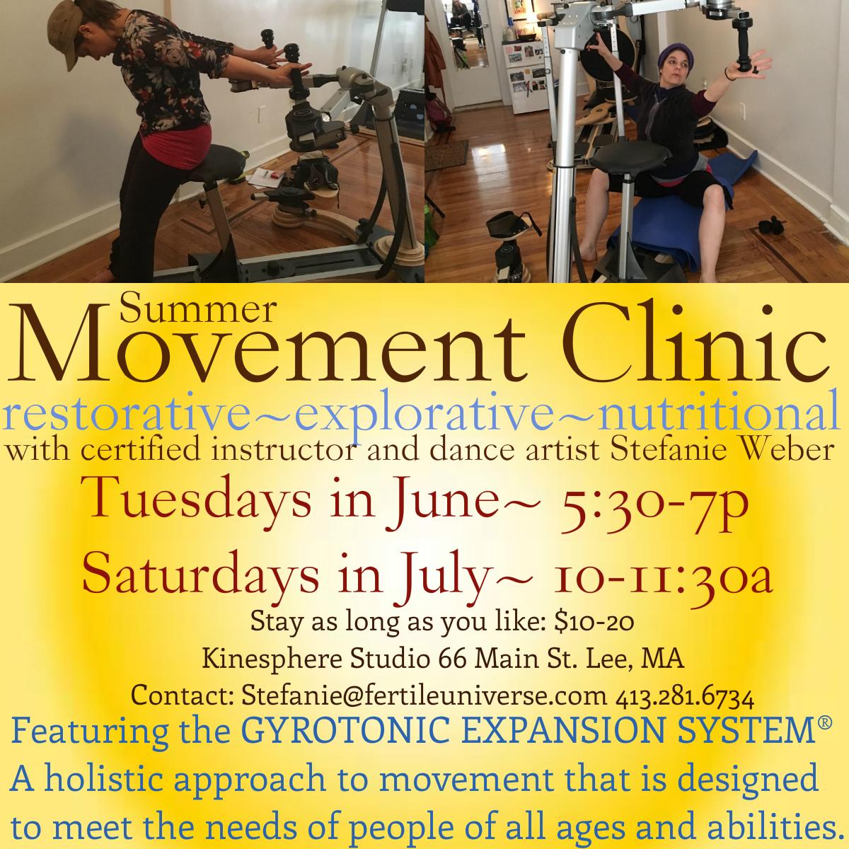 MovementClinic2016